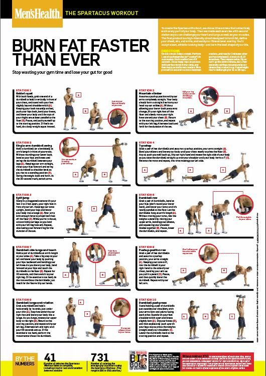 photograph regarding Spartacus Workout Printable identify Spartacus Training towards Mens Conditioning - Shrinkinguy Health and fitness